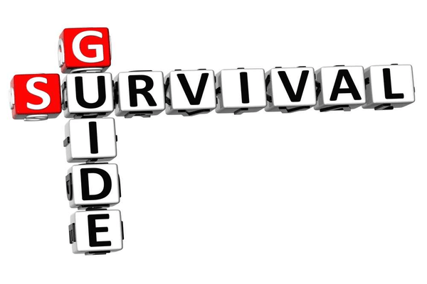 Fleet Managers Survival Guide
