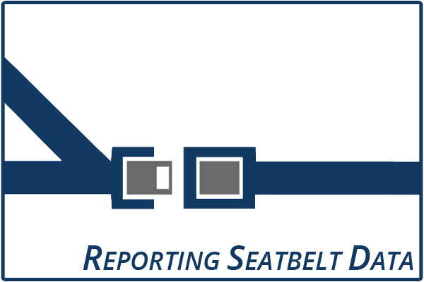 Reporting Seatbelt Data