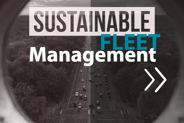 Sustainable fleet management