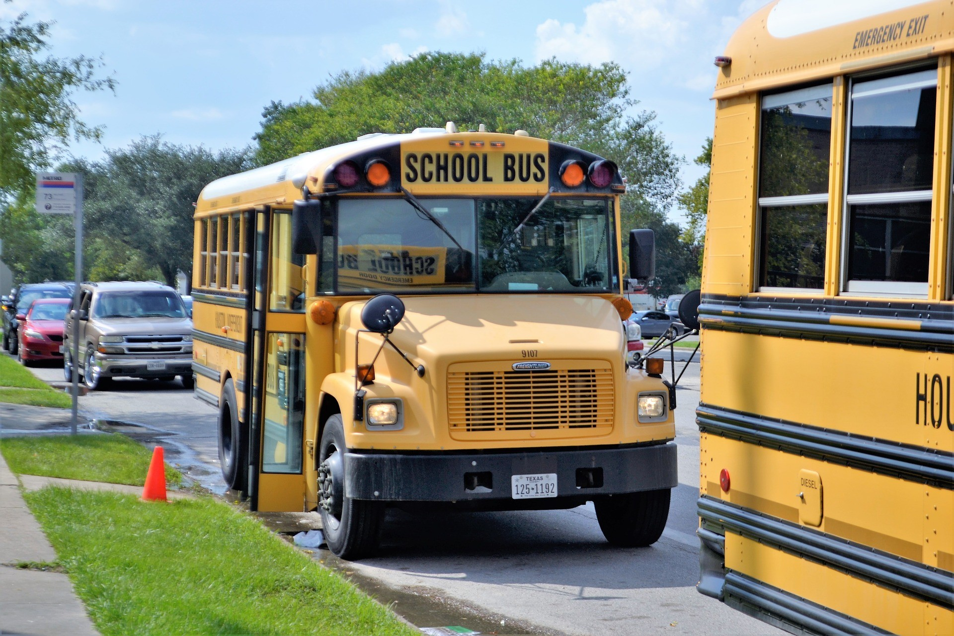 school busses on the bus stop